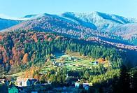 Morning autumn mountain forest and village Carpathian, Ukraine