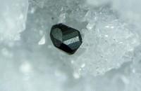 Minerals - Marri.