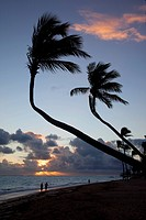 Bavaro Beach at sunrise, Punta Cana, Dominican Republic, West Indies, Caribbean, Central America