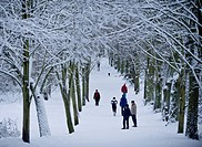 Hampstead Heath in winter, North London, England, United Kingdom, Europe