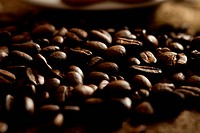 Close_up of individual coffee beans
