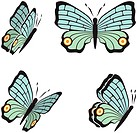 the same butterfly in four different sights