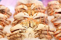 Dungeness crab at the market.