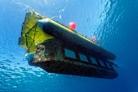 Sindbad yello submarine, Makadi Bay, Hurghada, Egypt, Red Sea, Africa