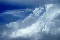 Mt Rainier from Longmire, Mt Rainier National Park, Washington