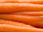 Macro shot of stacked fresh carrots