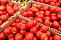 Boxes of bright red tomatoes ready for sale at a farmers market