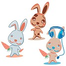 Characters Rabbit. Illustration vector.