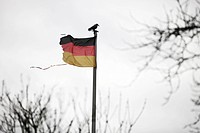 Torn German flag with a crow on the flagpole