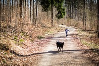 Boy and dog on dirt path in forest