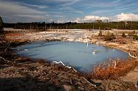 Norris Geyser Basin Yellowstone NP