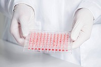 Germany, Bavaria, Munich, Scientist holding red liquid in test tray for medical research in laboratory