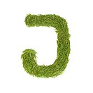 Green alphabet, letter J isolated on white