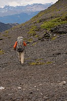 Patagonian Expedition Race, Chile, Karukinka National Preserve, trekking