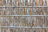 Palm leaf wall texture is natural wall
