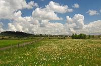 Dramatische Wolkenstimmung über der weiten Kalk_Hochebene Causse Méjean, Nationalpark Cevennen, Frankreich / Impressive cloud formations over the vast...