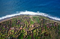 Fields on the rocky cliffs of the Atlantic coast at Achadas da Cruz, Madeira, Portugal, Europe