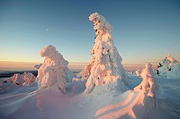 Winter morning on Mt. Brocken, Saxony-Anhalt, Germany, Europe