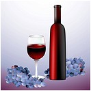A bottle of red wine and grapes. Image contains gradient mesh.