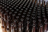 Empty bottles for bottling in a brewery