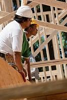 Carpenters lifting beam