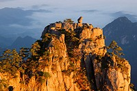 Detail of Monkey watching the Sea Peak at sunrise with fog in valley at Huangshan China