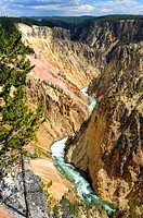 Yellowstone River National Park Wyoming WY United States