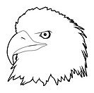 outline drawn eagle head on white background