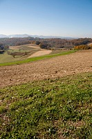 Landscape view in CroatiaZagorje, fields and trees in autumn