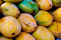 Fresh mango in market closeup background