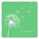 card with dandelion on green background