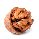 Walnut and shell isolated on white background