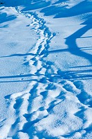 a few ski_tracks on a snowy piste