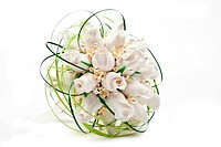 Bridal bouquet. On white background
