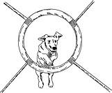 vector _ dog agility , isolated on background