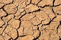 Global warming concept _ Cracked ground close_up _ Sahara Desert Marocco.
