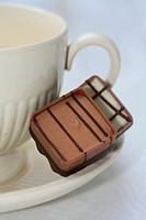 Two belgium chocolate pralines on a tea cup saucer