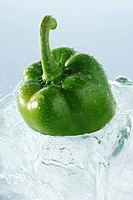 Green pepper in a block of ice