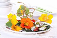 Nasturtium flower and blue cheese salad