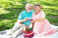 Beautiful senior couple has a romatic picnic in the park.