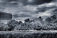 Dramatic cityscape of garden and clouds