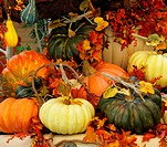 Winter garden in a lobby of magnificent hotel. A harvesting holiday: baskets and vases with multi_colored pumpkins, flowers and autumn leaves