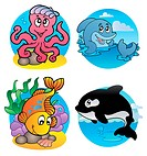 Various aquatic animals and fishes _ vector illustration.