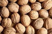 Many walnuts on a wooden board as a background motive