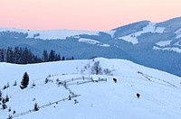 Dezembronya landscape in Ukraine Carpathian Mountains