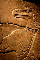 Egyptian Flacon Carving on Solid Rock _ God Horus