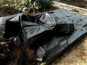 Preparing Mulch Sheet for Growing Strawberrys