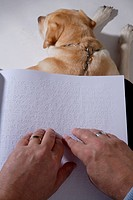 Visually_impaired person reading Braille, guide dog at their feet