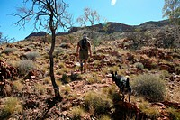 A Man and His Dog Heading out on a Bush Walk