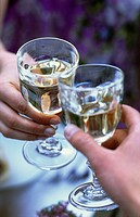 Two people clinking white wine glasses